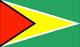 Georgetown flag